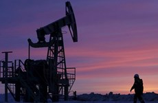 Giá dầu châu Á giảm trước những lo ngại về tình trạng dư cung