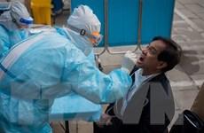 Tình hình dịch bệnh COVID-19: Thế giới ghi nhận gần 8 triệu ca mắc