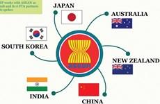 Học giả Ấn Độ: Việt Nam chủ động trong việc thúc đẩy đàm phán RCEP
