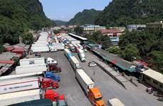 Đảm bảo các quy định khi xuất khẩu thực phẩm sang Trung Quốc