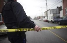 Mỹ: Xả súng tại bang California làm ít nhất 4 người bị thương