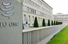 Cách thức vực dậy Tổ chức Thương mại Thế giới đang 'ốm yếu'