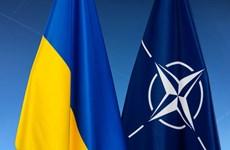 'Quy chế mới của NATO dành cho Ukraine mang đến nhiều cơ hội'