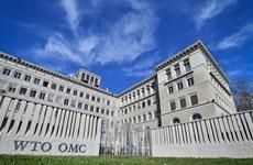 Cuộc đua trở thành tân Tổng Giám đốc WTO bước vào 'vòng chung kết'