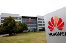 Đằng sau sự lạnh lùng của London trong quyết định 'cấm cửa' Huawei