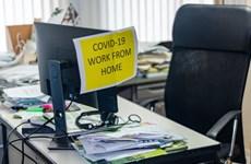 Xu hướng làm việc từ xa sẽ khiến hệ thống văn phòng thoái trào?