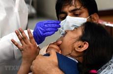 Hiệp hội y khoa Ấn Độ bi quan về tình hình dịch COVID-19