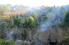 Cơ bản khống chế vụ cháy rừng tại núi Hầm Vàng ở Đà Nẵng