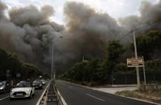 Bê bối che giấu bằng chứng trong thảm họa cháy rừng ở Hy Lạp
