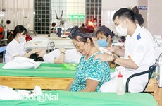 Đồng bào Công giáo Đồng Nai nỗ lực xây dựng nông thôn mới