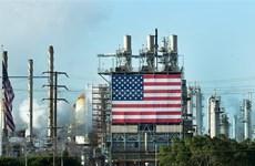 Chính sách ngoại giao dầu mỏ tác động tới cuộc bầu cử Mỹ