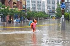 Mưa lớn tại Hàn Quốc, 3 người tử vong trong xe ôtô ngập nước