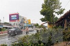 Cần Thơ: Nhà tốc mái, cây xanh bật gốc trong cơn mưa lớn