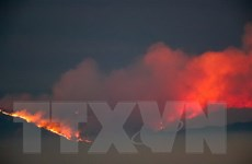 Cháy rừng lan mạnh tại California, hàng chục nghìn người phải sơ tán