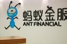 Công ty công nghệ tài chính của Alibaba 'rục rịch' lên sàn