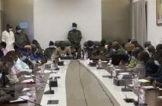 Phong trào M5-REP đề xuất quá trình chuyển tiếp 2 năm ở Mali