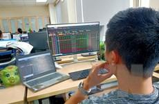 Vì sao thị trường chứng khoán đang hấp dẫn hơn với nhà đầu tư?