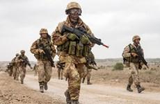 Đức cân nhắc cắt giảm số lượng binh sỹ đang đồn trú tại Iraq