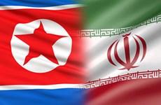 Quan chức Mỹ: Iran và Triều Tiên nối lại dự án hợp tác tên lửa tầm xa