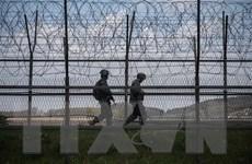 Truyền thông Triều Tiên: Hàn Quốc 'giả tạo' khi nói về hòa bình
