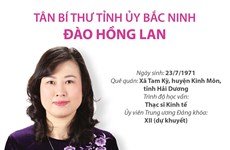 [Infographics] Thông tin về tân Bí thư Tỉnh ủy Bắc Ninh Đào Hồng Lan