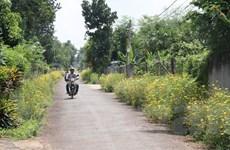 Đồng Nai hướng đến phát triển nông thôn mới theo chiều sâu
