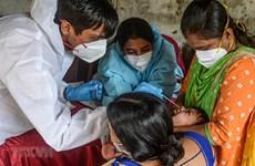 Số ca tử vong do COVID-19 tại Ấn Độ đã vượt 100.000 người