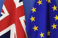 EU hối thúc Anh làm rõ quan điểm trong các cuộc đàm phán thương mại