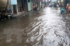 Áp thấp nhiệt đới gây mưa to ở các tỉnh Bắc Bộ, Bắc Trung Bộ