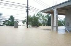 Quảng Bình tạm hoãn Đại hội Đảng bộ tỉnh để ứng phó với mưa lũ