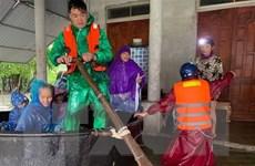 Xuất cấp 5.000 tấn gạo cứu trợ khẩn cấp người dân vùng lũ