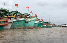 Cà Mau tích cực ngăn chặn các hành vi đánh bắt hải sản trái phép