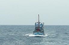 Tổ chức cứu nạn tàu cá Bình Định cùng 7 thuyền viên bị nạn trên biển