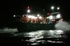 Một tàu cá mắc cạn tại vùng biển Lý Sơn khi vào tránh bão số 8