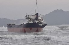 Bình Định: Cứu hộ thuyền viên tàu hàng mắc cạn trên vùng biển Đề Gi