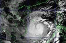 Bão số 9 giật cấp 17, tâm bão trên vùng biển từ Đà Nẵng đến Phú Yên