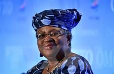 Mỹ không ủng hộ ứng cử viên Nigeria làm Tổng Giám đốc WTO