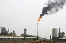 Vì sao OPEC lại lo ngại về nguy cơ nền kinh tế Iraq sụp đổ?