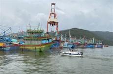 Xử phạt chủ tàu thuyền không tuân thủ quy định phòng, chống bão số 10