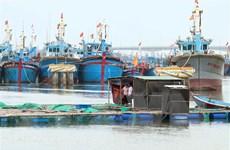 Khánh Hòa, Phú Yên sơ tán dân, Ninh Thuận cấm tàu thuyền ra khơi