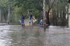 Thừa Thiên-Huế: Vùng 'rốn lũ' Quảng Điền mênh mông biển nước