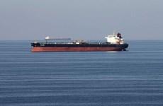Saudi Arabia: Liên quân Arab đánh chặn một tàu cài bom của Houthi