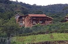 Lâm Đồng: Xử lý dứt điểm 'làng biệt thự' xây dựng trên đất rừng có chủ