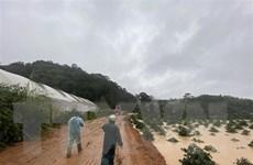 Vụ du khách bị lũ cuốn trôi tại Lâm Đồng: Tìm thấy một thi thể