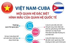 [Infographics] Việt Nam-Cuba: Hình mẫu của quan hệ quốc tế