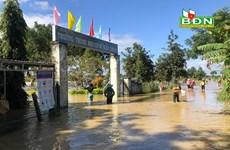 Đắk Nông: Nước sông dâng cao đột ngột gây thiệt hại nặng cho người dân