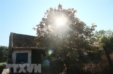 Bắc Bộ nắng ấm trong ngày cuối tuần, không khí bị ô nhiễm nặng