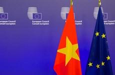 Năm đặc biệt nâng tầm quan hệ giữa Việt Nam và Liên minh châu Âu