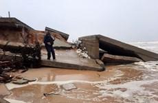 Quảng Nam: Sạt lở bờ biển Tam Hải chưa có dấu hiệu dừng lại