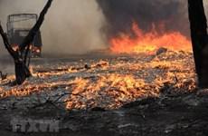 Hà Nội: Dập tắt đám cháy tại bãi phế liệu ở khu vực ngoài đê sông Hồng